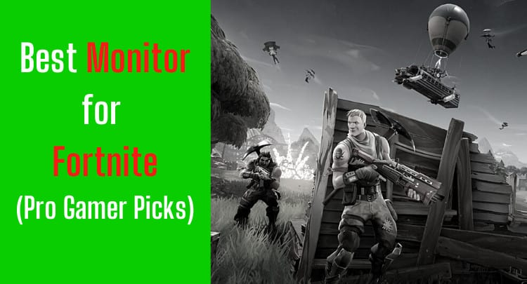 Playing Fortnite | What is the Best Monitor? | Pro Gamer Picks (2021)